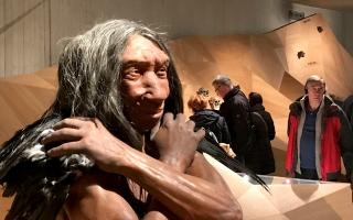jpk_neanderthal1
